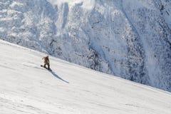 Snowboarderritten op een steile skihelling op een zonnige de winterdag stock foto