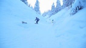Snowboarders делают фокусы в снежном лесе сток-видео