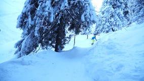 Snowboarders едут на горной тропе в покрытом снег лесе сток-видео