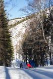 2 snowboarders на наклонах Стоковая Фотография