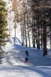 Snowboarders на следе Стоковая Фотография