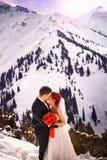 Snowboarders свадьбы соединяют как раз пожененный на зиме горы Стоковые Изображения RF