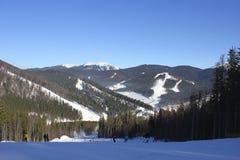 Snowboarders e esquiadores Fotografia de Stock