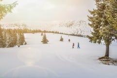 Snowboarders i de Carpathian bergen royaltyfria foton