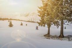 Snowboarders i de Carpathian bergen i Rumänien royaltyfri fotografi