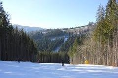 Snowboarders y esquiadores Imagenes de archivo