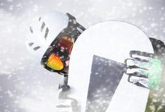 Snowboarderstående Fotografering för Bildbyråer