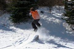 Snowboarding d'arrière-cour Photos stock