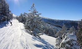 Snowboarding em Bulgária. Estância de esqui Borovets Imagens de Stock Royalty Free