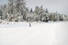 Snowboarding Japan. The days first run. Stock Photography