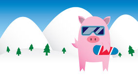Snowboarding Pig Stock Photos
