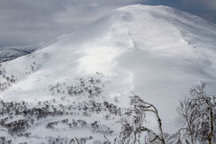 Snowboarding and skiing in Niseko Royalty Free Stock Photography