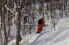 Snowboarder in orange camouflage outfit gliding on fresh powder snow in the forest. Snowboarding is a thrilling sport and wonderful activity for winter stock photos