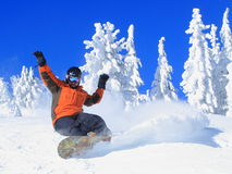 Snowboarding un jour d'oiseau bleu image stock
