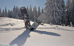 Snowboards in the mountains. Two snowboards stuck into thick snow  with fir trees behind it Royalty Free Stock Photography