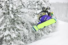 Snowboardsprung Stockbilder