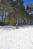 snowboardtonåring Royaltyfria Bilder