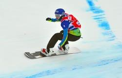 Snowboardwereldbeker stock afbeeldingen