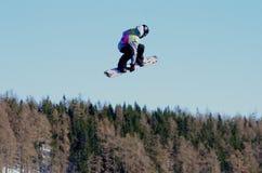 Snowbord Fest Stock Foto's