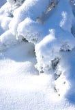 Snowbound fotos de stock