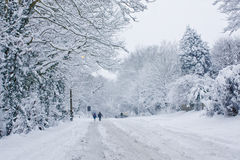 Snowbound Royalty Free Stock Photography