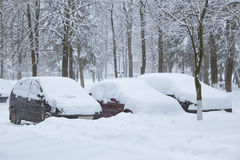 Snowbound cars Stock Image