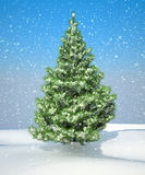Snowbound Christmas firtree Stock Photo