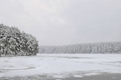 Snowbound forest beyond the river. In a winter evening Stock Photography