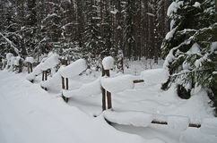 Snowbound Hurdle in Winter Forest. Royalty Free Stock Image