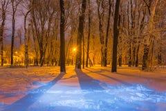 Snowbound park at the night scene. Winter snowbound park at the night scene Stock Images