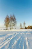 Snowbound road. Royalty Free Stock Image