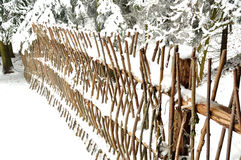 Snowbound twig fence in the coniferous forest Stock Photos