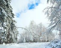 Snowbound winter earthroad Stock Photos