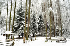 Snowbound winter forest with elements of wooden decoration - shed, cart and fence. Open air museum in Lviv Stock Photo
