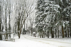 Snowbound Winter Forest With Elements Of Wooden Decoration - Shed And Twig Fence. Open Air Museum In Lviv Royalty Free Stock Photos