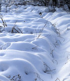 Snowbound winter meadow Royalty Free Stock Image