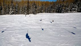 Snowbowl_AZ Fotos de Stock