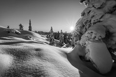 Snowburst. Sunrise on a snow-filled landscape near Kongsberg, Buskerud, Norway Royalty Free Stock Photo