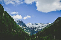Snowcap Mountain in Between Green Trees over Blue Wide Sky Royalty Free Stock Photography