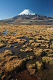 Snowcap Parinacota. Parinacota volcano at Lauca park Stock Photography