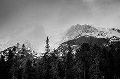 Snowcapped berg och skogar Arkivfoto