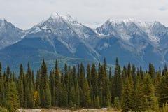 snowcapped kanadensiska rockies Royaltyfria Bilder