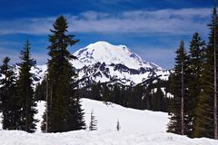 Snowcapped Mount Rainier Royalty Free Stock Images