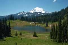 Snowcapped Mount Rainier royaltyfri bild