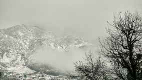 Snowcapped mountain with alpine vegetation / vegetation, cloud and white Snowcapped mountains Stock Photography