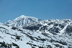 Snowcapped Mountains. Seen from Alaska's White Pass and Yukon Route Railroad Royalty Free Stock Photos
