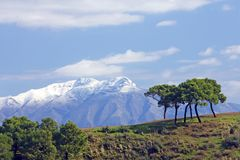 Snowcapped mountains and trees in Spain Royalty Free Stock Photo
