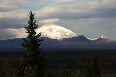 Snowcapped Mt Drum Alaska. Snowcapped Mt Drum in Alaska consuming sunset light Stock Photos
