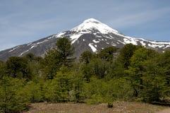 Snowcapped peak of Osorno volcano Royalty Free Stock Photos