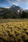 Snowcapped peak in summer Royalty Free Stock Photos